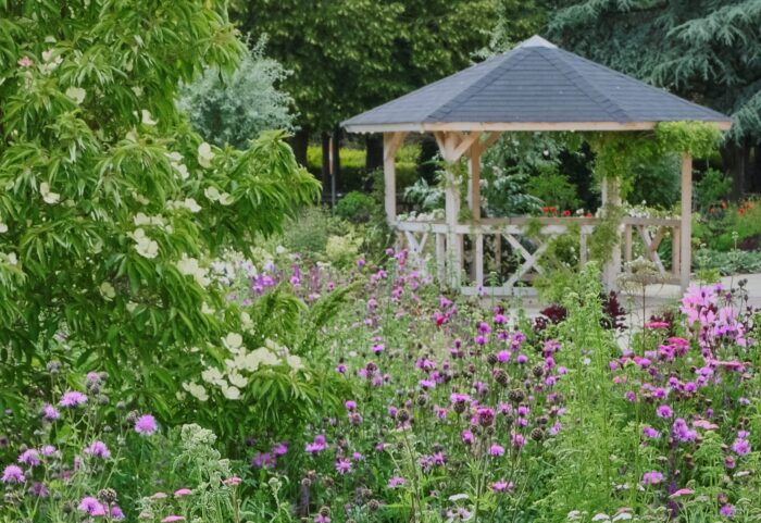 wooden garden gazebo surrounded by romantic puple and white planting. On a sunny summer day.